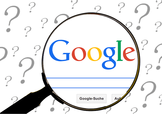 Question EVERYTHING: SEO Shorts